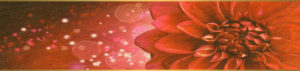 Deň kúzelnej moci chryzantém